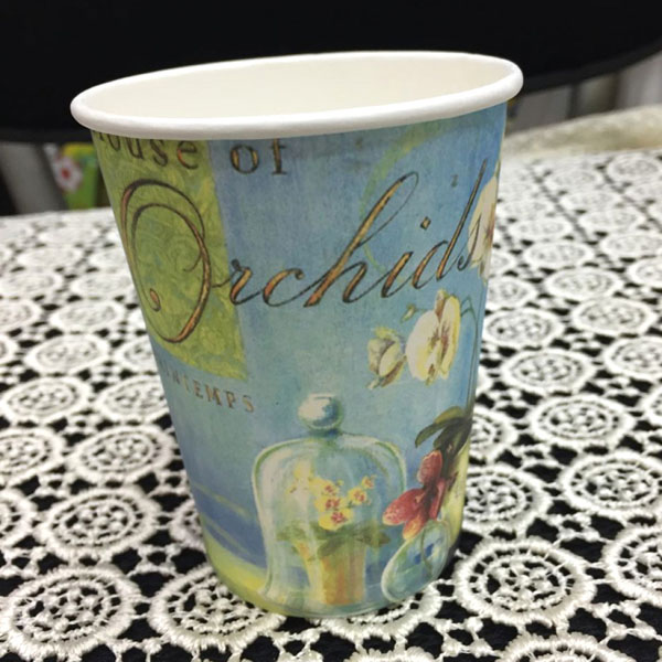 Birthday Party Paper Cup