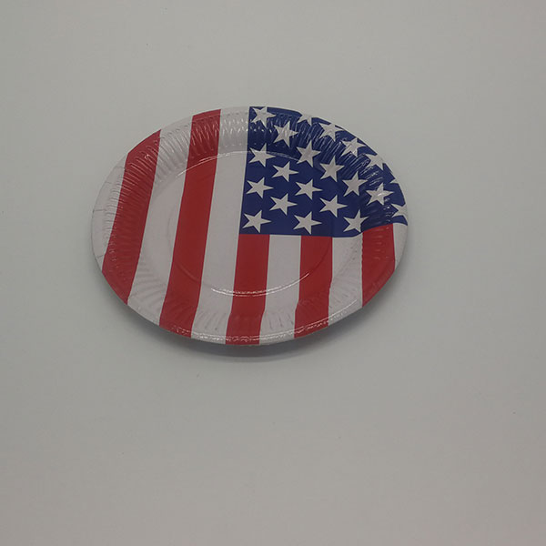 Flag party paper plate